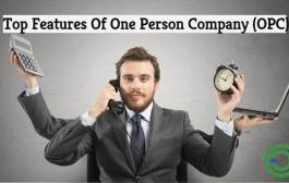 One Person Company India Benefits | One Person Company Features