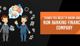 Non-Banking Financial Company Returns (Reserve Bank) Directions, 2016