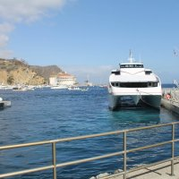 How to Ride FREE on Your Birthday on the Catalina Express, Birthday Offerings on the Island!