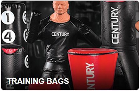 Century stand up wavemaster punching bag review