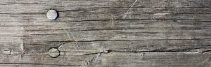 cropped-wood.jpg