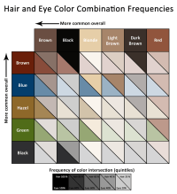Hair and Eye Color Correlations  Let's Talk Data