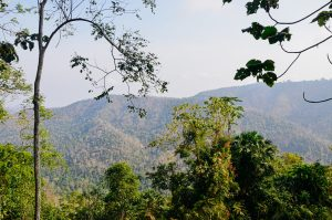 A beautiful view of the mountains in Khao Yai, Thailand