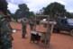Centrafrique : Accrochages meurtriers entre les éléments des FACA et l'UPC àAlindao
