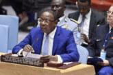 Centrafrique, le surprenant optimisme de l'ONU sur les élections de décembre 2020