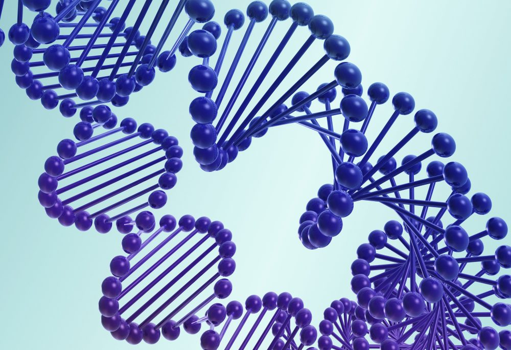 Illustration of the twisting spirals of two DNA double helices in royal blue and purple on a turquoise colored background