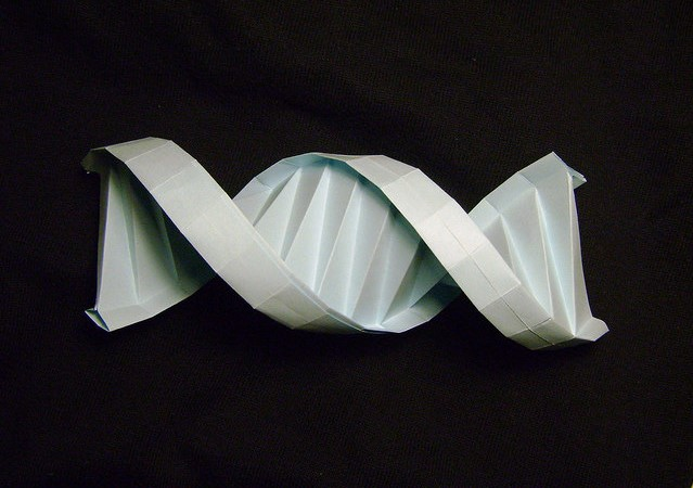 A paper model of DNA to illustrate genetic testing