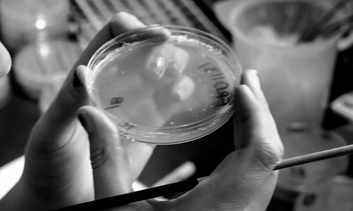 a hand holding a petri dish in a lab, in black and white