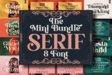 Last preview image of Serif Font Bundle