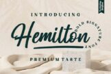 Last preview image of Hemilton
