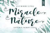 Last preview image of Miracle Nature