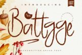 Last preview image of Battgge