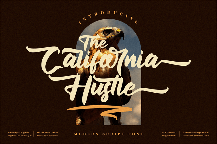 Preview image of The California Hustle