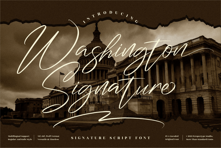 Preview image of Washington Signature
