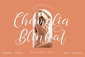 Chamelia Blinkar