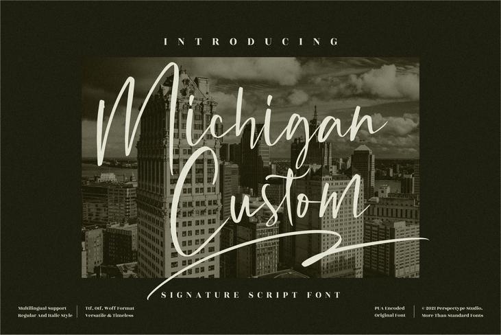 Preview image of Michigan Custom