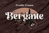 Last preview image of Bergante