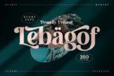 Last preview image of Lebagof