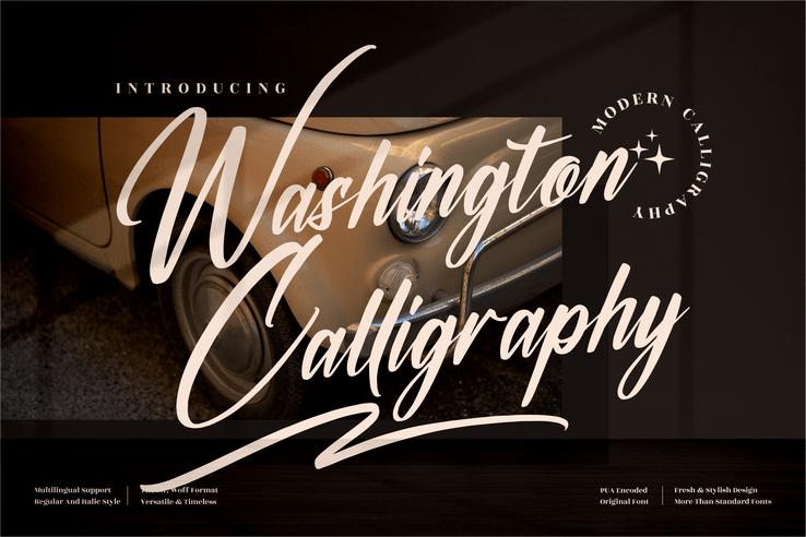 Preview image of Washington Calligraphy