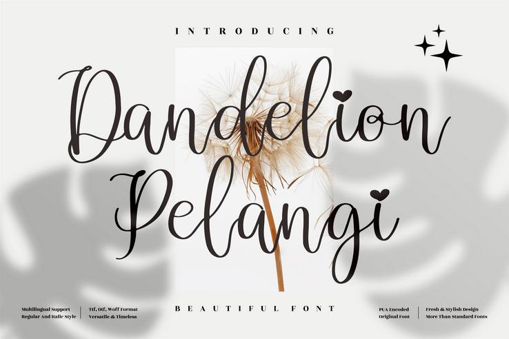 Preview image of Dandelion Pelangi