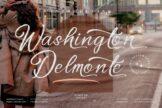 Last preview image of Washington Delmonte
