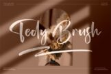 Last preview image of Tedy Brush