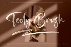 Tedy Brush