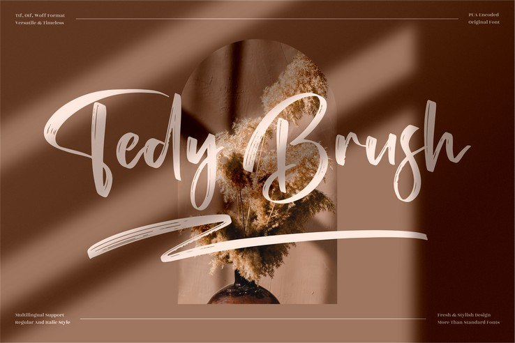 Preview image of Tedy Brush