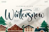 Last preview image of Wintersnow
