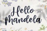 Last preview image of Hello Mandela