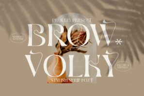 BROW VOLKY
