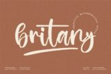 Last preview image of Britany