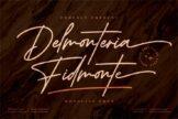 Last preview image of Delmonteria Fidmonte