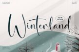 Last preview image of Winterland