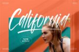 Last preview image of California