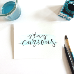 stay curious lettering by martina johanna