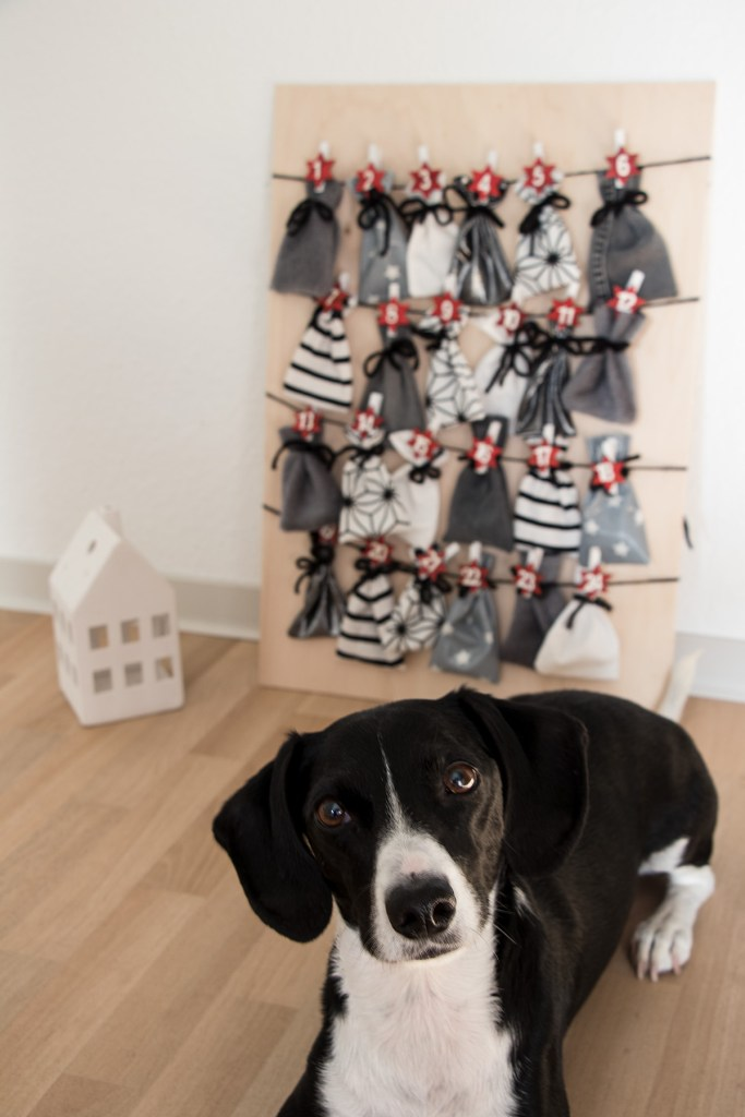 letters_and_beads_diy_no_waste_christmas_adventskalender_stoffreste_hund