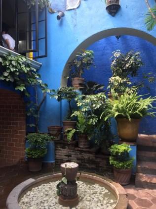 Frontyard at Casa Rivera, Cuernavaca