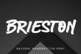 Last preview image of Brieston Advertisement Font