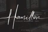 Last preview image of Hamilton – POD License