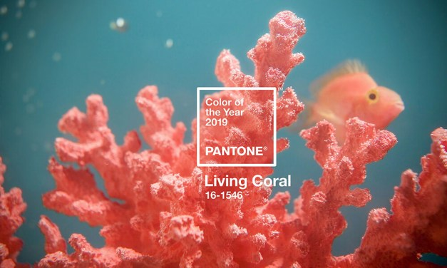 And the Pantone® Color of the Year 2019 is….