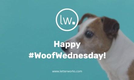 #WoofWednesday