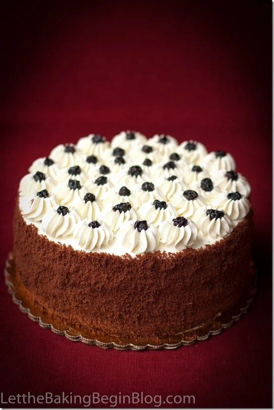 Chocolate Cake with Walnuts and Prunes on a cake platter topped with blackberries and shredded chocolate on the sides.
