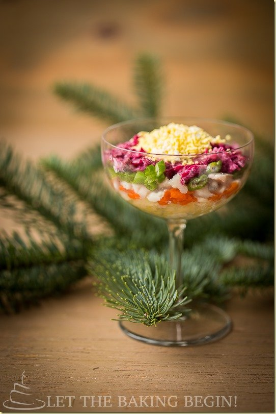 Shuba is a Layered Beet salad with Herring that gets its unique name from the beets, potatoes, carrots and scallions that cover the diced herring (brined fish) like a fluffy coat. Each layer is dressed with either a mayo or sour cream dressing, but in my family it has always been only mayonnaise.