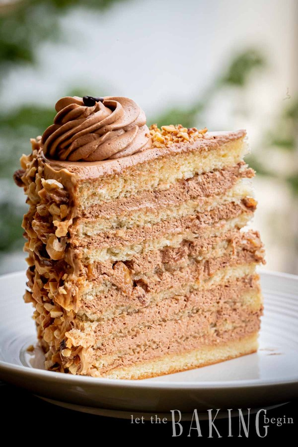 A slice of layered cake with coffee frosting sitting on a white plate.