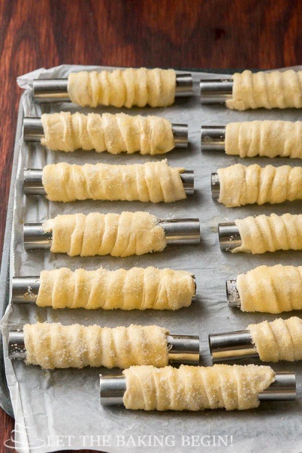 Cream Horns with Whipped Cream Filling - Trubochki @ LetTheBakingBeginBlog.com