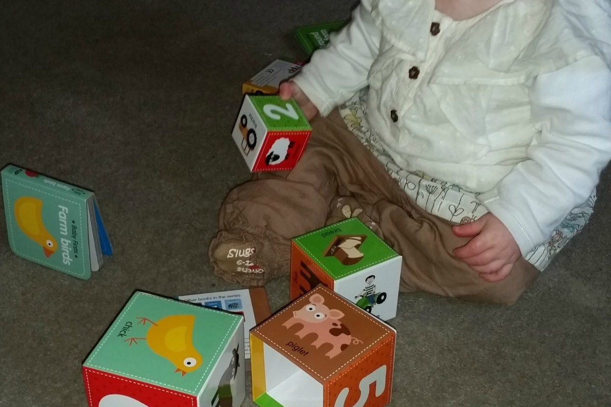 NPP Baby First Books