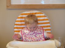 cornish daisy pod bib