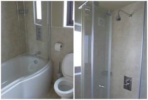 bluestone bathrooms