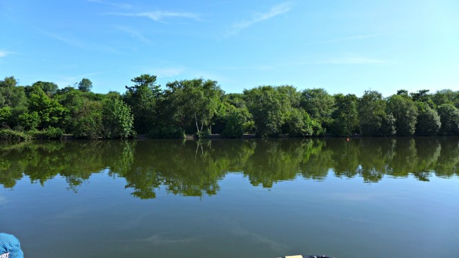 Etherow Country Park 1